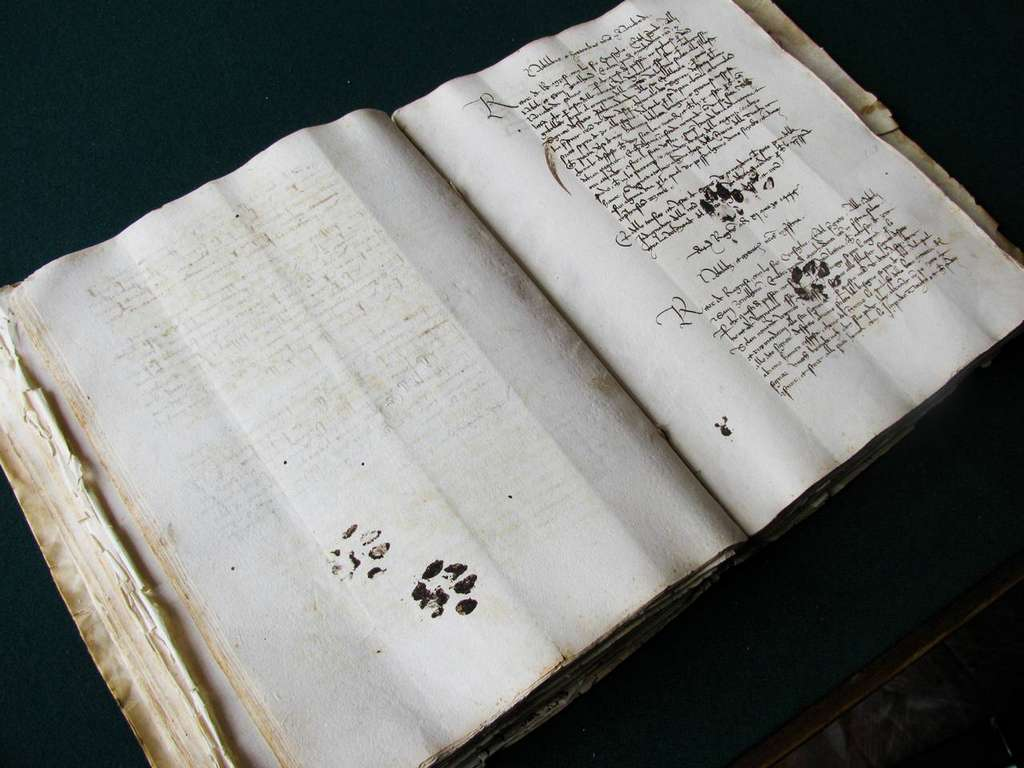 Inky cat paw prints across the pages of a 15th Century handwritten book