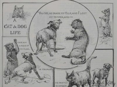 'A Cat & Dog Life' | Comic Illustration | 1904