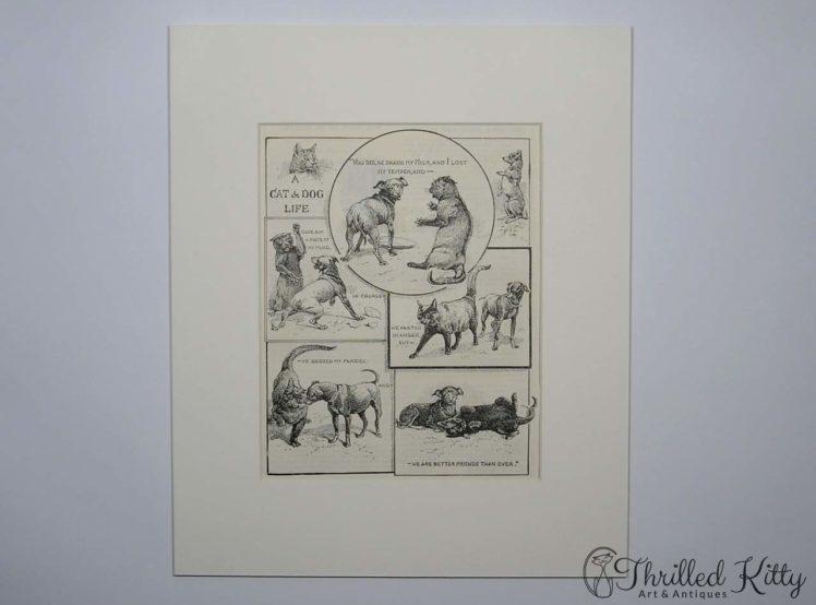 A Cat & Dog Life-Comic Illustration-1904-2