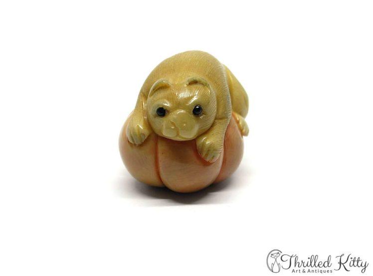 Carved Tagua Nut Katabori Netsuke-Cat on a Pumpkin-6