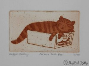 'Cat in a Shoe Box' by Maggie Burley | Limited Edition Etching