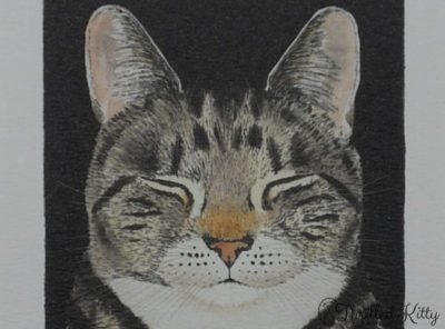 'Cat nap' by Kay McDonagh | Contemporary Print