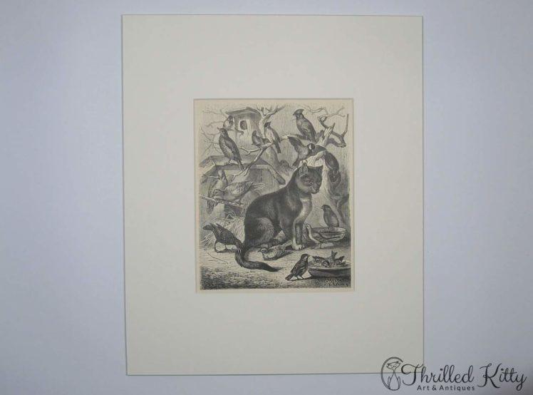 Die Vogelkatze by Carl Gerber-Engraving-1885-2