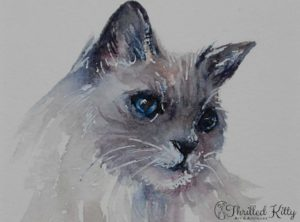 Portrait of a Long-haired Cat by Arti Chauhan | Watercolour