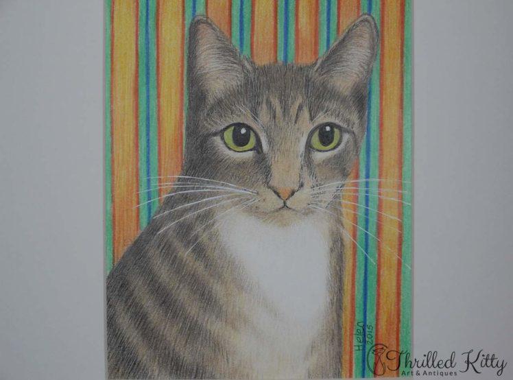 Simon Kitty Cat by Helen V James-Pencil-4
