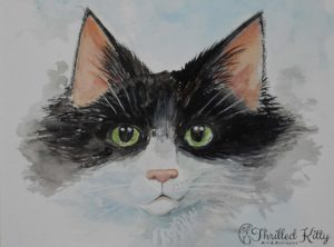 'The Cat Next Door' by Paul Selvey | Watercolour