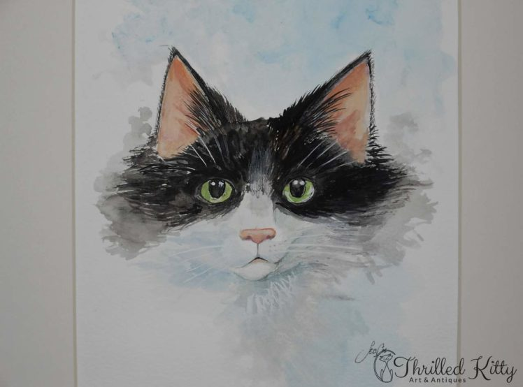 The Cat Next Door by Paul Selvey-Watercolour-4