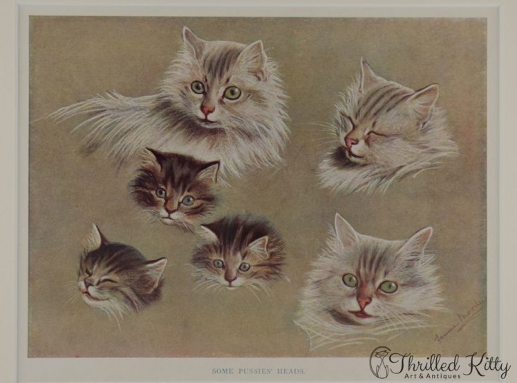 Some-Pussies-Heads-by-Fannie-Moody-3