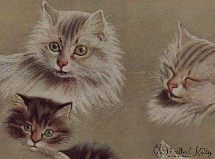 Some-Pussies-Heads-by-Fannie-Moody-6