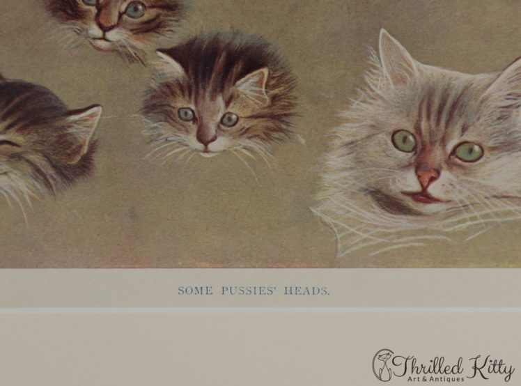 Some-Pussies-Heads-by-Fannie-Moody-7
