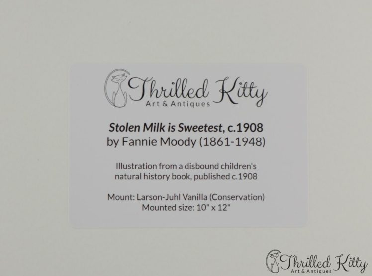 Stolen-Milk-is-Sweetest-by-Fannie-Moody-7