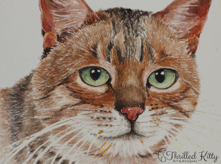 Tabby-by-Hazel-K-Adlam-Watercolour-3