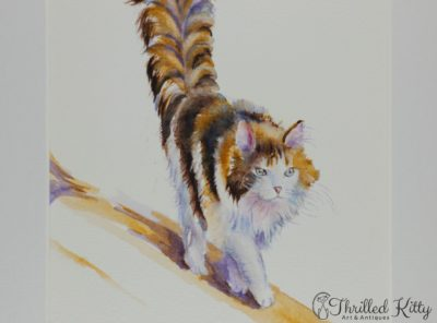 'The Calico Cat That Walked by Himself' by Debra J Hall | Watercolour