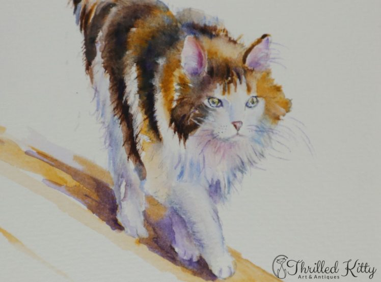 The-Calico-Cat-That-Walked-by-Himself-by-Debra-J-Hall-5