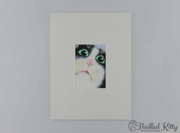 cat-face-close-aceo-1