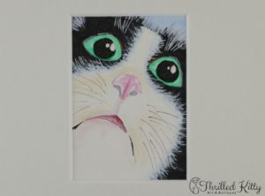 'Cat Face' by Julia Pamely | ACEO